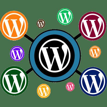 WordPress and CSS Developer